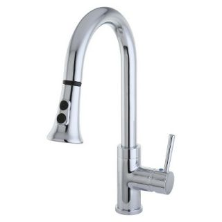 Gourmetier Chrome Single Handle Faucet with Pull Down Spout