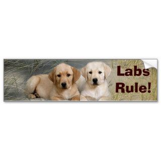 Labrador Retriever Bumper Sticker Puppies Rule