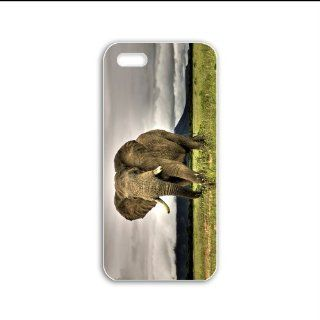 Design Iphone 5C Animals Series african elephant animal Black Case of Girlfriend Case Cover For Girls Cell Phones & Accessories