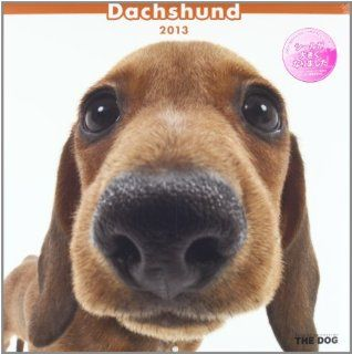 Japanese Animal Calendar 2013 THE DOG Dachshund #K366SS (japan import) 4582259884595 Books