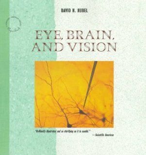 Eye, Brain, and Vision (Scientific American Library Series) 9780716760092 Medicine & Health Science Books @
