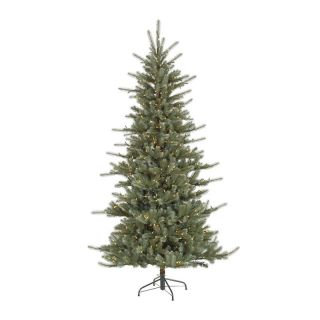Medium Colorado Blue Dura Lit Christmas Tree   Christmas Trees