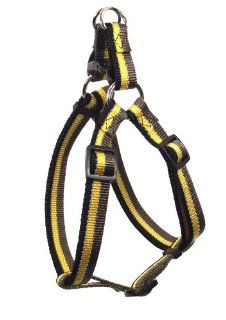 Hamilton Adjustable Easy on Large Dog Harness with Reflective Threads, 1 by 30 to 40 Inch, Brown/Gold/Black  Pet Fashion Collars