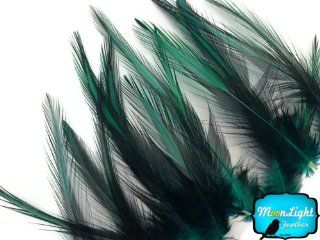 Rooster Feathers, Peacock Green Laced Medium Rooster Cape Feathers   10 Pieces