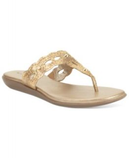 Sperry Top Sider Womens Serenafish Thong Sandals   Shoes