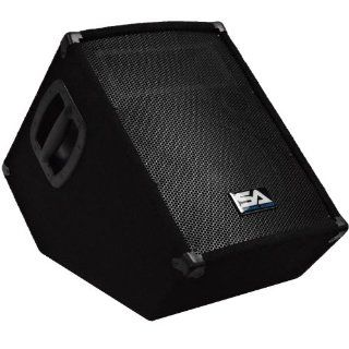 "Seismic Audio   SA 10MT PW   Powered 2 Way 10"" Floor / Stage Monitor Wedge Style with Titanium Horn   250 Watts RMS   PA/DJ Stage, Studio, Live Sound Active 10 Inch Monitor Musical Instruments"