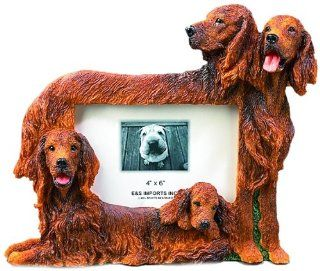 E&S Pets 35257 129 Large Dog Frames