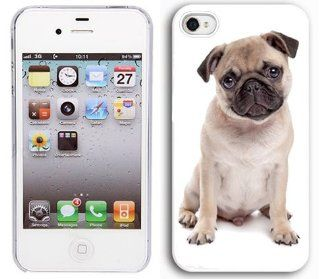 Apple iPhone 5 5S White 5W105 Hard Back Case Cover Color Cute Pug Puppy Dog Cell Phones & Accessories