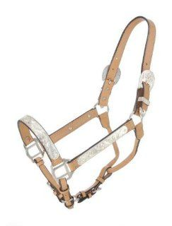 Halter Silver Bar Quarter Horse Show Halter, Light oil, Horse  Sports & Outdoors