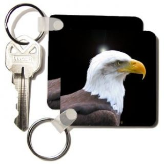 kc_155627_1 InspirationzStore Photography   Bald Eagle bird of prey profile on black   eagle scout gifts   wild animal wildlife photography   Key Chains   set of 2 Key Chains Clothing