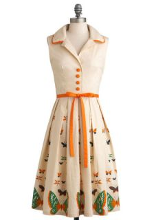Tatyana/Bettie Page My Bread and Butterfly Dress  Mod Retro Vintage Dresses