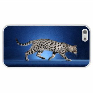Custom Made Apple Iphone 5/5S Animal Cat Of Fashion Present White Case Cover For Everyone Cell Phones & Accessories