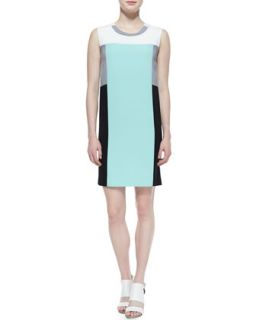 Womens Sleeveless Colorblock Sheath Dress   DKNY   Julep/Blk/White (LARGE)