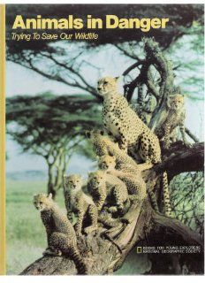 Animals in Danger Trying to Save Our Wildlife National Geographic Staff 9789997433305 Books