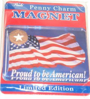 Proud to Be American Limited Edition Acrylic American Flag Penny Charm Magnet Kitchen & Dining
