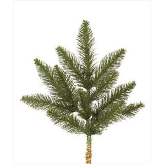 NorthLight 18 inch Camdon Fir Artificial Christmas Spray