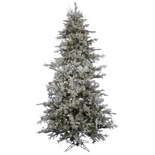 62 Frosted Wistler Fir Dura Lt 1200 Count