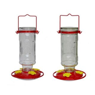Royal Wing Large Glass Pop Bottle Hummingbird Feeder