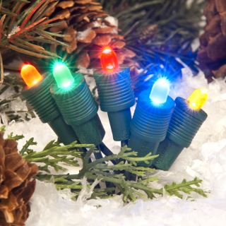 TreeKeeper 50 Count Constant Multicolor LED Plug In Mini Christmas String Lights