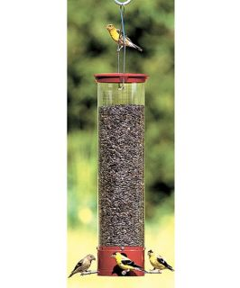 Droll Yankee Dipper 21 in. 4 Port Squirrel Proof Bird Feeder   Bird